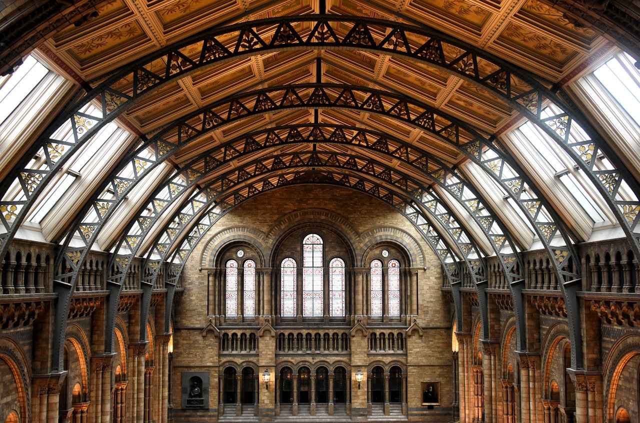 museum-of-natural-history-944497_1280